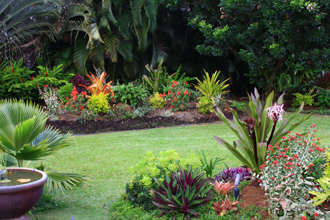 Colorful Tropical Garden 2
